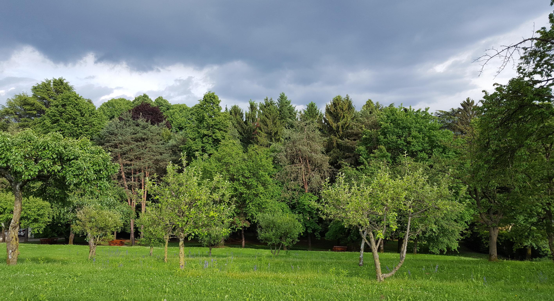 Parco Rizzani