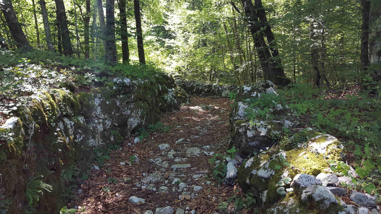 Turismo sostenibile: alla scoperta delle antiche vie di pellegrinaggio