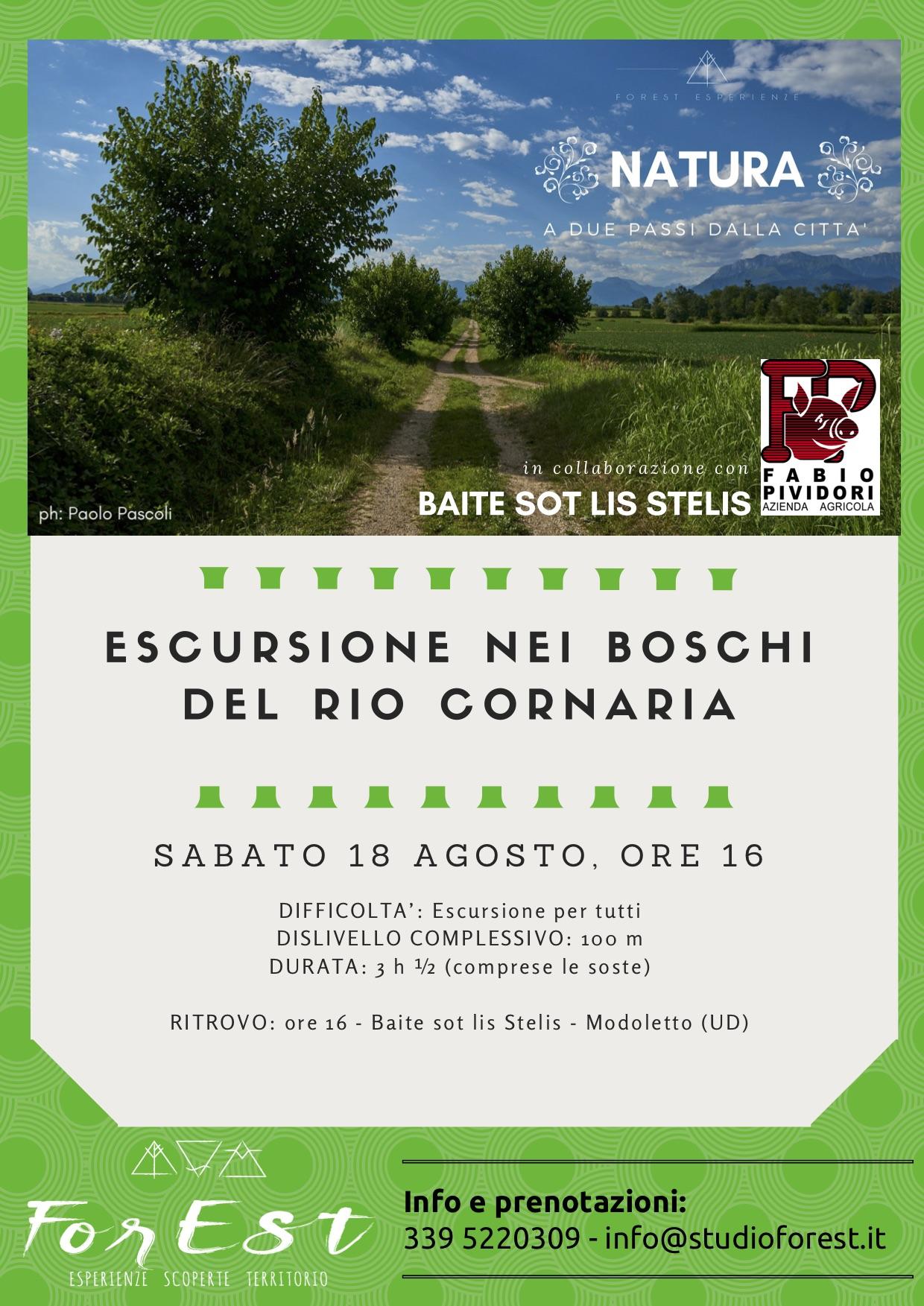 Sabato 18 agosto ore 16:00: escursione nei boschi del rio Cornaria.