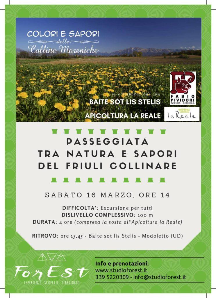 Appuntamento escursionistico alla scoperta delle bellezze e dei sapori delle Colline Moreniche tra Modoletto e Brazzacco: sabato 16 marzo 2019